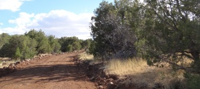 Lot 473 Sierra Verde Ranch, Wooded 36 Acres