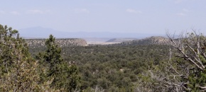 Nearly 40 acres of Wooded Hilltop in Shadow Rock Ranch
