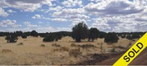 38.41 acres  w/ Great Access for $49,000, Seligman, AZ