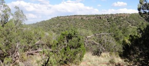 Heavily Wooded Lot with Juniper and Pi�on Pine, Views!