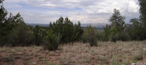 Sierra Verde Ranch, Lot 668, Wooded Hillside and Hilltop with APS Power!