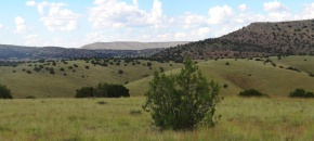 40-Acre Hilltop with Views, Lot 432, Sierra Verde Ranch