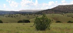 40-Acre Hilltop with Views, Lot 432, Sierra Verde Ranch