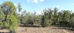 Lot 69 in Juniper Mountain Ranches, No HOA!