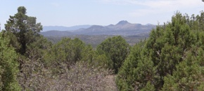 Lot 843 Sierra Verde Ranch